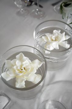 White Tablescape ● Floral Centerpiece ● Fresh gardenias float in low round vases # Neutral Wedding ... Budget wedding ideas for brides, grooms, parents & planners ... https://itunes.apple.com/us/app/the-gold-wedding-planner/id498112599?ls=1=8 … plus how to organise an entire wedding ♥ The Gold Wedding Planner iPhone App ♥