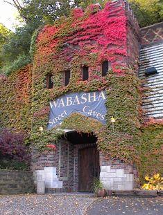 Wabasha Street Caves in St. Paul, Minnesota has history tours--1920s gangster, Halloween hauntings, etc.