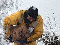 Feuerwehrmänner riskieren ihr leben für einen im gefrorenem See ertrinkenden Hund