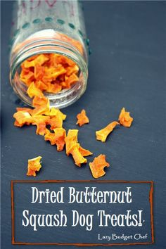 A step by step tutorial how to make homemade dried butternut squash dog treat or dog chew recipe.