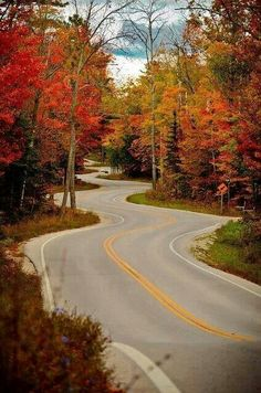 Winding road in Wisconsin. .pretty Fall