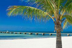 The Florida Keys (Florida) | 26 Stunning Destinations You Can Drive To