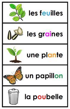 Madame Belle Feuille: Les plantes et le jour de la terre - Plants and earth day