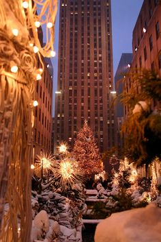 Christmas in New York- I have ALWAYS wanted to do this!  I love it in the spring, but this looks magical.  :)