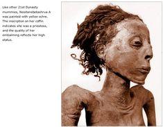 Nesitanebetashrua A, Egyptian priestess. Ancient Artifacts, Ancient Egypt, Bog Body, Rome, Egypt Mummy, Canopic Jars, Egyptian Mummies, Pompeii And Herculaneum, Artistic Installation