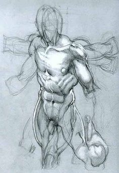SIMONE BIANCHI - ANATOMICAL DRAWINGS ✤ || CHARACTER DESIGN REFERENCES | Find more at https://www.facebook.com/CharacterDesignReferences if you're looking for: #line #art #character #design #model #sheet #illustration #expressions #best #concept #animation #drawing #archive #library #reference #anatomy #traditional #draw #development #artist #pose #settei #gestures #how #to #tutorial #conceptart #modelsheet #cartoon