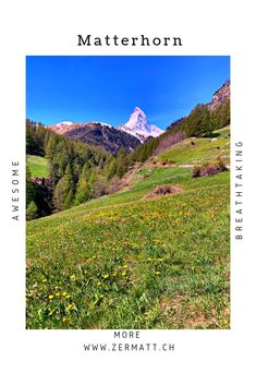 d31e9154f87cc7 Die 90 besten Bilder von Matterhorn - Zermatt, Switzerland, Summer ...
