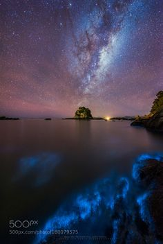 Light me the way - The first on a series of photos on a very fortunate night with a spectacular show of bioluminescence