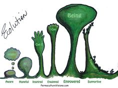 The Stages of Ecolution At the great EcoArts Australis National Conference, Catherine van Wilgenburg: gave an inspiring presentation entitled: 'I have been transformed by this land'… Permaculture, Affirmations, Inspiration, Artworks, Gardens, Plants, Biblical Inspiration, Positive Affirmations, Confirmation
