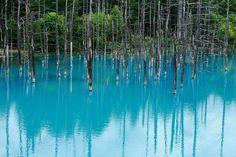 天候によって、池の色は不思議なくらい様々に変化します。