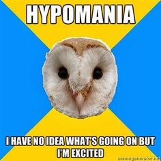 Bipolar Owl how about manic psychosis or suicide? Oh yeah, it can get a whole lot worse. Bipolar disorder is a very serious illness! Living With Bipolar Disorder, Panic Disorder, Chronic Illness, Mental Illness, Chronic Pain, Bipolar Humor, Bipolar Symptoms, Bipolar Quotes, Bipolar Funny