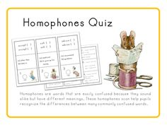 Homophones Quiz ( 70 mini cards with Answer sheets )