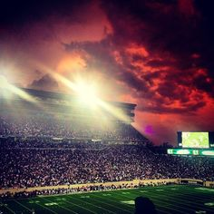 Michigan State Spartans Tumblr Afrattini That S How