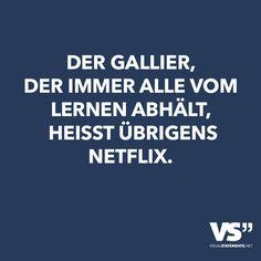 Der Gallier, der immer alle vom Lernen abhält, heisst übrigens Netflix.
