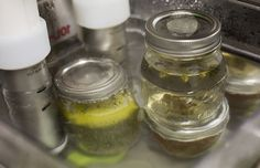Sous vide weed infusions - #cannabis #edibles #sousweed