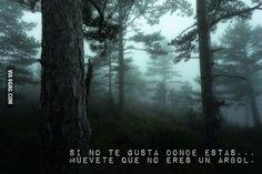 ... Si no te gusta donde estás... muévete que no eres un árbol.