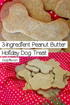 While you're baking the Christmas cookies this year, don't forget to whip up a special holiday dog treat for Fido! Check out our easy recipe! treats Easy Peanut Butter Holiday Dog Treat Your Pup is Begging For - DogVills Puppy Treats, Diy Dog Treats, Dog Biscuit Recipes, Dog Food Recipes, Easy Dog Treat Recipes, Sweets Recipes, Easy Recipes, Christmas Chocolate, Christmas Dog