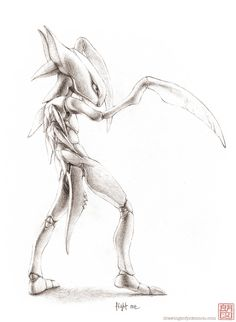 Drawings of Pokemon and also drawings of other things Pokemon Sketch, My Pokemon, Pokemon Stuff, Pokemon Painting, Psy Art, Famous Monsters, Black And White Drawing, Human Art, Fanart