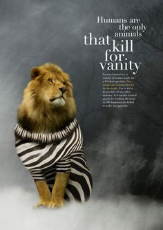 This poster turns the tables on us—making us question who the real threat is. Its a powerful image with strong typography, and the glum background adds the emotion the designer wants us to feel about the topic. Stop Animal Cruelty, Animal Testing, Desgin, Animal Activist, Animal Welfare, Animal Quotes, Animal Rights, Lions, In This World