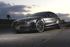 W218 CLS Black Bison 2012-2014 - Wald USA | Number one source for WALD International. Made in Japan.