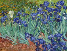"""""""Irises""""   May, 1889   Painted at Saint-Rémy, France   one of his most recognized artwork   Inspired by the nature surrounding him   Currently at The Getty Center, Los Angeles, California.  """
