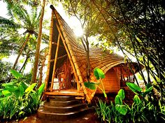 The Flying Tortoise: Beautiful Bamboo Homes Built In Bali...