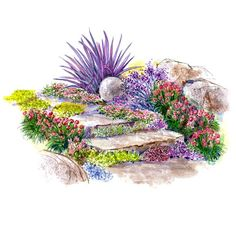 Drought-Tolerant Slope Garden: Transform a tough-to-mow hillside into a wonderful display of color and texture with this design filled with easy-care plants. Garden size: 8 by 9 feet