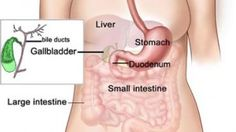 Gallstones – Symptoms, Causes & Treatment - http://womenclan.com/gallstones-symptoms-causes-treatment-1505