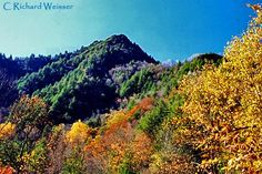 Image detail for -The Chimney Tops Trail in the Great Smoky Mountains National Park