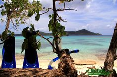 Lindquist Beach Snorkel Gear St. Thomas USVI - where we did our vow renewal
