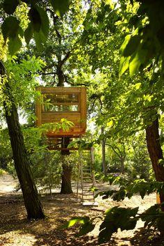 Quedamos en… la casa del árbol