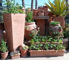 Italian Terracotta in all shapes and sizes are the perfect home for all of your gardening needs. These handcrafted terra cotta pots will make your garden flourish!