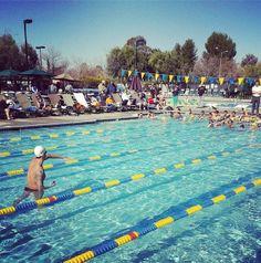 SWIM TIP: Freestyle Drill Progression & the Center Snorkel