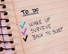 The Real TO DO List Funny Picture Quote About Life - Cute Funny Quotes About Life