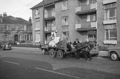 Who remembers the rag man? Balloons,clothes pegs,yoyos,wee cameras that squirt water.what else could wee get for our rags? I'm sure I remember that woolens got you more lol Gorbals Glasgow, The Gorbals, Glasgow Scotland, Edinburgh, Paisley Scotland, Horse Wedding, Old Photos, Liverpool, Britain