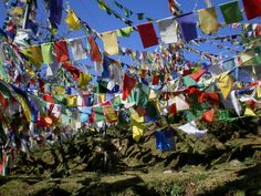 Tibetan prayer flags....prayers carried into the wind.  :-)