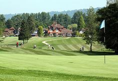 Society details for Gatton Manor Golf Club   Golf Society Course in England   UK and Ireland Golf Societies