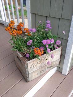 Wooden box planter.
