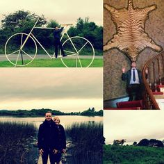 Sept 2016 Vacation Witnessing in Galway Ireland - A tiger on the wall in an Oughterard stately home a giant bike in Moycullen village.  And of course - cows..... #jw  #jwpioneer #vacationwitnessing #oughterard #ireland #galway #salthill #ministry #cart