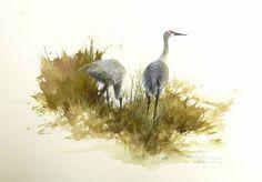 Morten E Solberg | Watercolor animals | Pinterest