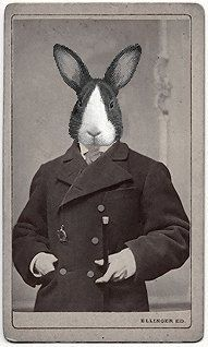 rabbit people series by tmp @ Urban Uniquities