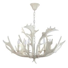 Shop Birch Faux Antler Chandelier from Safavieh at Neiman Marcus Last Call, where you'll save as much as on designer fashions. Antler Chandelier, White Chandelier, Chandelier Shades, Chandelier Lighting, Chandeliers, Coastal Chandelier, House Lighting, Bedroom Lighting, Kitchen Lighting