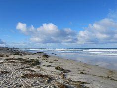 A walk in nature: Asilomar State Beach on California's Monterey Peninsula