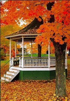 Travel Discover Fall gazebo = 2 of my favorite things! Fall gazebo = 2 of my favorite things! Gazebos Autumn Scenes Seasons Of The Year Fall Pictures Amazing Pictures All Nature Gilmore Girls Autumn Day Autumn Leaves Fall Pictures, Fall Photos, Amazing Pictures, Autumn Scenes, Seasons Of The Year, Fall Season, Beautiful Places, Beautiful Beautiful, Scenery