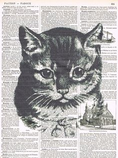 CAT Altered antique book page prints; buy three get one free    I am in Canada; AVERAGE SHIPPING TIME TO U.S.A. 4-10 **BUSINESS** DAYS (do not