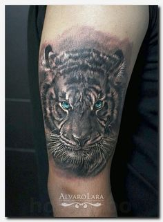 #tigertattoo #tattoo true love tattoo, stores that sell temporary tattoos, heart of a lion tattoo, best tattoo lettering fonts, arm wrap tattoos for guys, temporary tattoo inkjet paper, male rose tattoo designs, how to do henna tattoos, short inspirational tattoos, scottish tattoo 2017, bird art tattoo, two koi fish meaning, strength in chinese tattoo, after effects of tattoo, irish flower tattoo, mens wrist tattoos