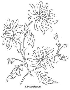 nermın kakuş - My site Floral Embroidery Patterns, Embroidery Flowers Pattern, Hand Embroidery Designs, Vintage Embroidery, Embroidery Applique, Embroidery Stitches, Simple Line Drawings, Flower Sketches, Flower Doodles