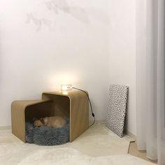 Pet Furniture, Furniture Design, Dog Room Decor, Be Design, Dog Spaces, Dog Rooms, Cat Room, Animal Decor, Dog Houses