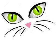 Cartoon Cat Face Eyes Clip Art Stock Illustration - Illustration of kitties, features: 3234409 Holly Hobbie, Cat Face Drawing, Cartoon Eyes, Cartoon Witch, Witch Face, Cat Crafts, Animal Faces, Cat Tattoo, Stone Painting