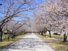 鏡野公園(高知県香美市)